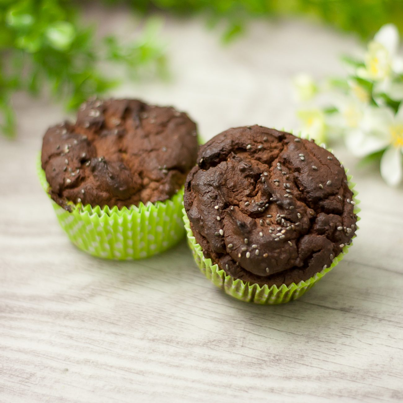 Low Carb Chia Schoko Muffins